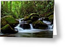 Roaring Fork Waters Greeting Card