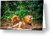 Roaring Lions Greeting Card