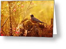 Robin In Spring Greeting Card
