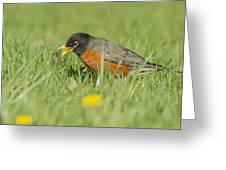Robin Vs Worm Greeting Card