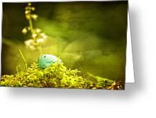 Robin's Egg On Moss Greeting Card