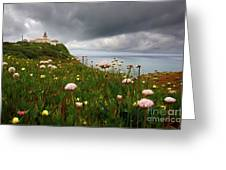 Roca Lighthouse Greeting Card