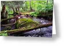 Rock Creek Greeting Card