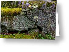 Rock Face With Moss Greeting Card