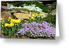 Rock Garden Flowers Greeting Card