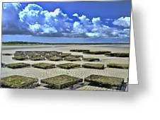 Rock Harbor Lowtide 3 Greeting Card