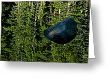 Rock Out Of Reflecting Lake Greeting Card