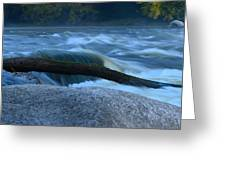 Rock Rapids Two Greeting Card