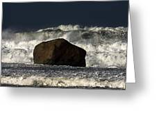Rock V Wave I Greeting Card by Tony Reddington