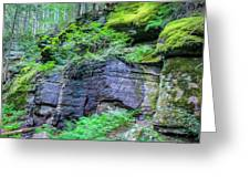 Rock Wall Trail Of The Cedars Glacier National Park Painted Greeting Card