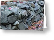 Rock Walls Greeting Card