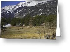 Rockies Greeting Card by Tom Wilbert