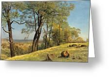 Rockland County. California Greeting Card