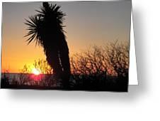 Rockport Texas Greeting Card
