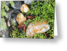 Rocks And Lichen Greeting Card