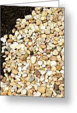 Rocks And Mulch Greeting Card