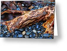 Rocks And Roots Greeting Card