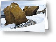 Rocks At Brown Bluff, Antarctica Greeting Card
