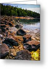 Rocks At Shore Of Georgian Bay Greeting Card