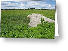 Rocks In A Tall Grass Prairie In Pipestone National Monument-minnesota Greeting Card