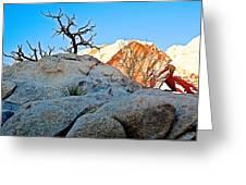 Rocks In Sun And Shade Along Barker Dam Trail In Joshua Tree Np-ca- Greeting Card