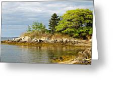 Rocky Coast In Maine Greeting Card