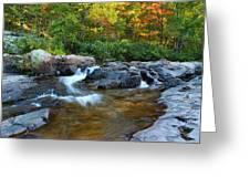 Rocky Creek Above Rocky Falls 1 Greeting Card