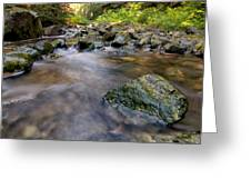 Rocky Creek Greeting Card