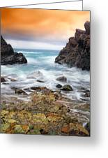 Rocky Forster 010 Greeting Card
