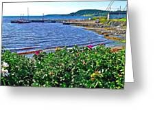 Rocky Harbour Roses-nl Greeting Card