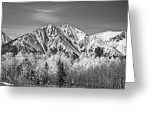 Rocky Mountain Autumn High In Black And White Greeting Card