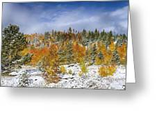 Rocky Mountain Autumn Storm Greeting Card by James BO  Insogna