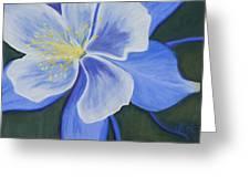 Rocky Mountain Columbine Greeting Card