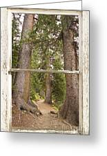 Rocky Mountain Forest Window View Greeting Card