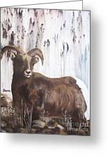 Rocky Mountain High Greeting Card by Sharon Burger