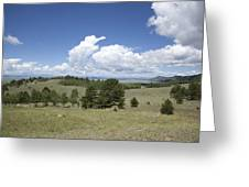 Rocky Mountain Meadow Greeting Card