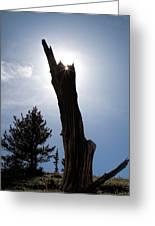 Rocky Mountain Obelisk Greeting Card