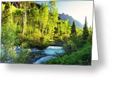 Rocky Mountain River Greeting Card