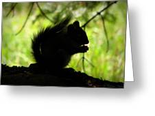 Rocky Mountain Squirrel Silhouette Greeting Card