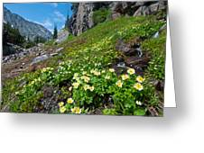 Rocky Mountain Summer Landscape Greeting Card