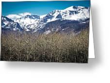 Rocky Mountain Woodland Greeting Card