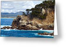 Rocky Outcropping At Point Lobos Greeting Card
