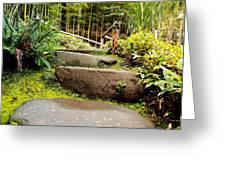 Rocky Path Greeting Card