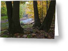 Rocky River Autumn 4 Greeting Card