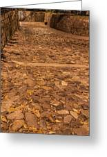 Rocky Road To The River In Savannah Greeting Card