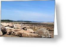 Rocky Shore To Rocky Mountain Greeting Card