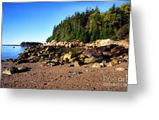 Rocky Shoreline Deer Isle Maine Greeting Card