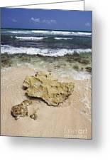 Rocky Shoreline In Tulum Greeting Card