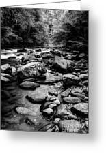 Rocky Smoky Mountain River Greeting Card