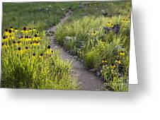 Rocky Top Trail Greeting Card